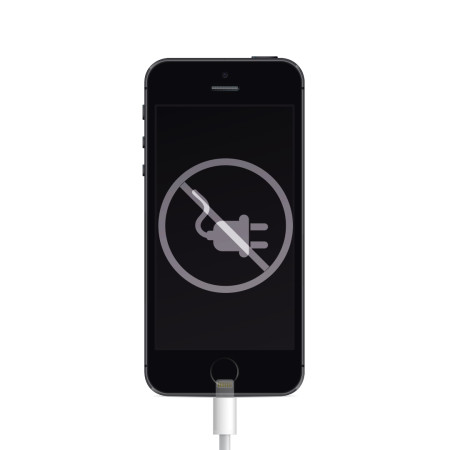 iphone5s_ladconnector.jpg